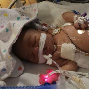 Newborn Amias